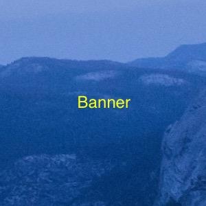 Banner X